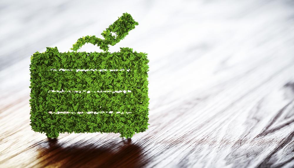 Green Business Travel